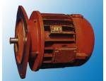 ZDH系列方形电动葫芦用锥形转子电动机