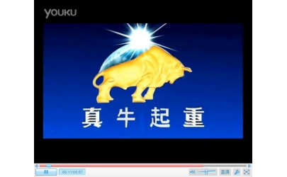 河南真牛起重机有限公司公司宣传片 (954播放)