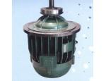 葫蘆起升電機(鐵山起重)