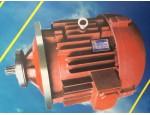 银川电动葫芦电机