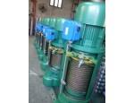 温州专业生产电动葫芦