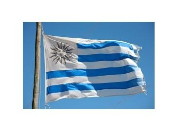 乌拉圭140兆瓦风电项目获中国4.5亿贷款支持