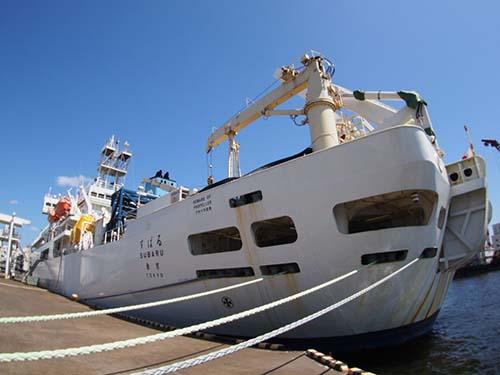 """海底电缆敷设船""""subaru""""号支援日本apg海底电缆项目"""