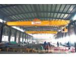 杭州改造葫芦双桥式起重机