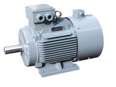 河南优质YZR电动机