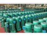 郑州专业生产电动葫芦