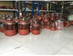 河南厂家专业生产锥形电机