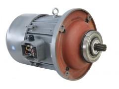 双速双绕组电机销售热线:王经理18637362626