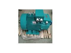 河南生產銷售YZR起重及繞線轉子三相異步電動機