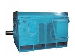 Y系列高压电机-山西电机18434300301