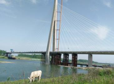 国内最大跨度独塔斜拉桥实现合龙