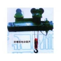 上海电动葫芦厂家制造王13818986507