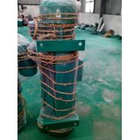 广州厂家供应优质电动葫芦