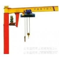 进贤县悬臂吊销售范经理 13767106661