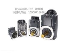 上海欧式起重机减速机电机及配件15900718686