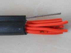 秦皇岛控制电缆厂家直销13643355176