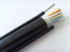 秦皇岛控制电缆线13643355176
