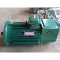 丽江YZR电机厂家直销13513731163销售部