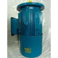 河南专业生产冶金电机、现货批发-13460473456