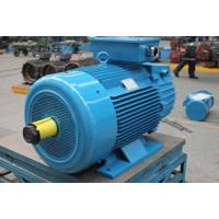 合肥起重机YZR.YZ系列电机18756098758
