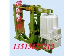 直销电力液压鼓式制动器YWZ10-200/E23