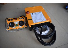 天津厂家直销工业遥控器13663038555