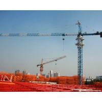 湖北荆门普通式塔吊 行车厂家销售13593793525