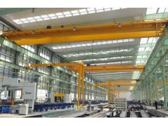 天津滨海新区欧式起重机厂家13663038555