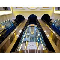 平顶山观光电梯 优质厂家 15093859783王经理