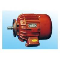 梅州葫芦运行电机优质供应商