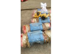 惠州乱排绳电动葫芦生产厂家13553422227
