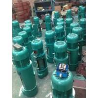 青岛钢丝绳电动葫芦热销产品18754265444