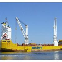 武汉起重机-品质保障船用起重机销售13871412800