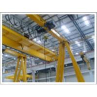 扬州电动葫芦门式起重机优质生产13951432044