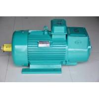 武汉起重机-起重配件YZR转子电机销售13871412800