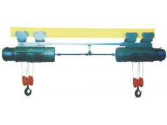 嘉兴钢丝绳电动葫芦专业厂家13967300223