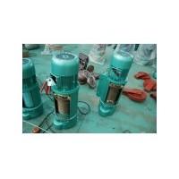 青岛电动葫芦性能稳定13780659886