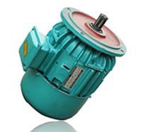 ZDY121-4 0.8KW锥形转子三相异步电动机
