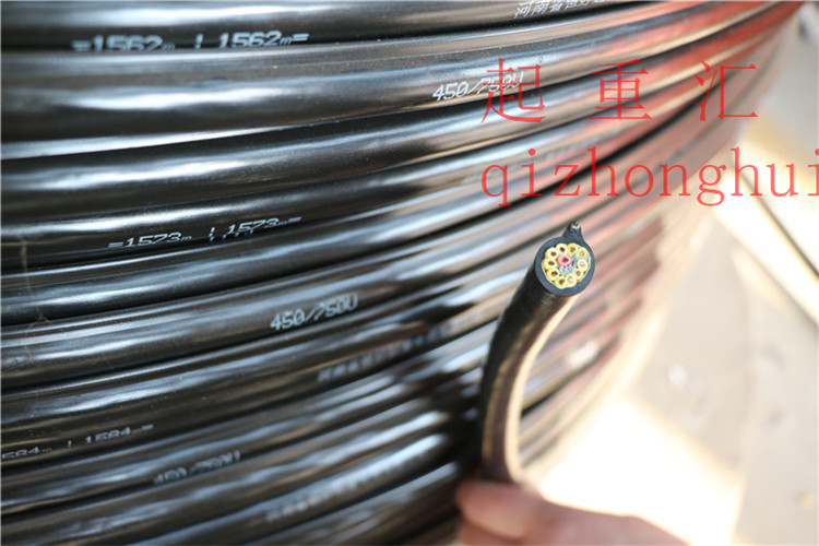 双钢丝扁电缆