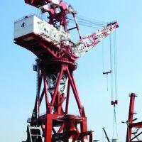 泰州专业生产门坐起重机优质产品