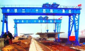 杭州起重机|杭州起重机-路桥专用