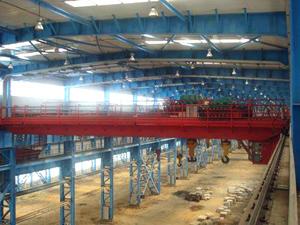 杭州起重机|杭州起重机-10吨绝缘桥式起重机