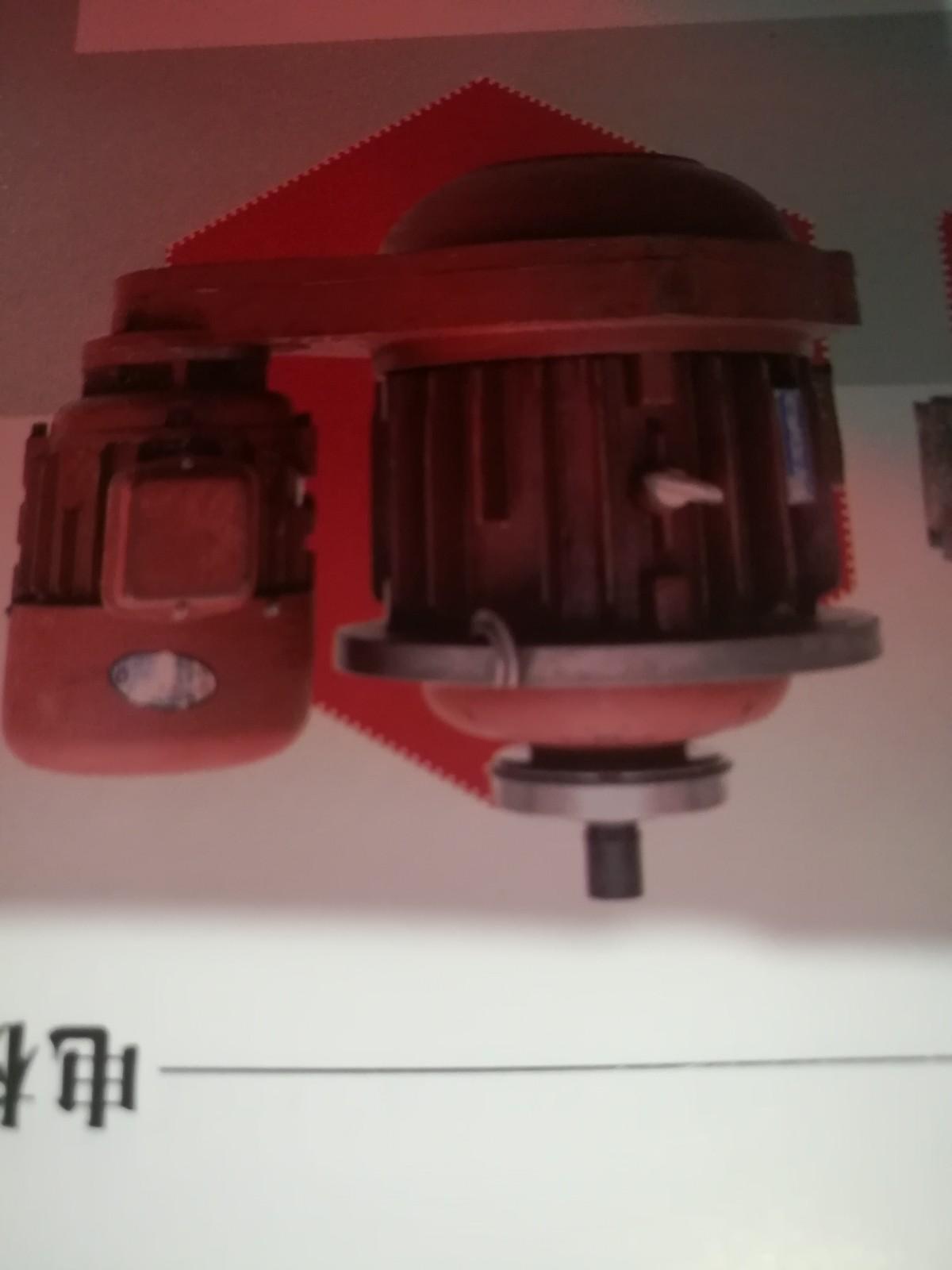 沈阳电动葫芦MD电机