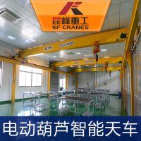 5吨 10吨 15吨无尘室电动葫芦 苏州智能葫芦特惠价格出售