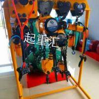 西安起重机生产销售气动葫芦