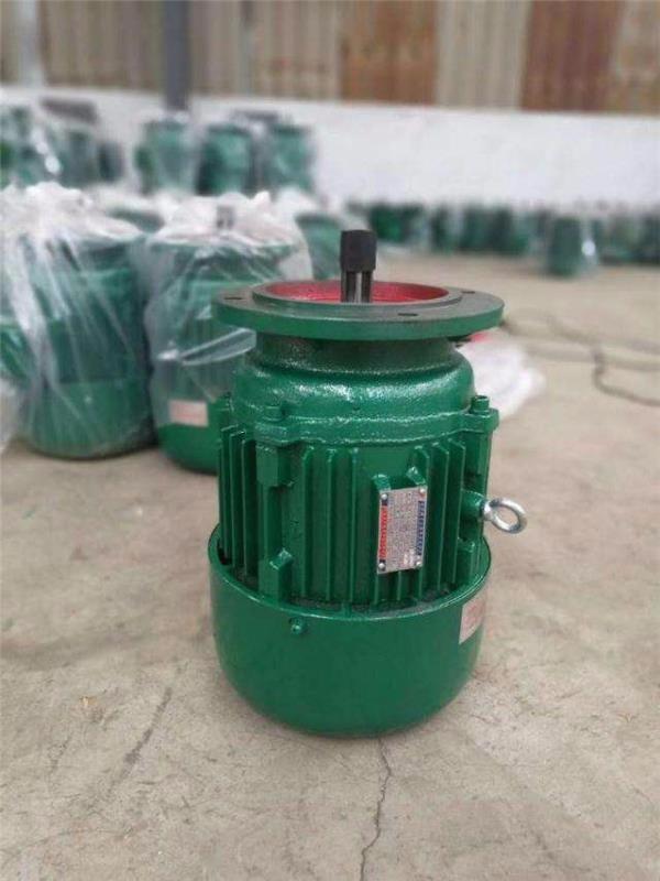 潍坊厂家专业销售卷扬电机