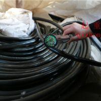 上海振豫起重各種電纜線