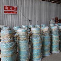 娄底钢丝绳电动葫芦